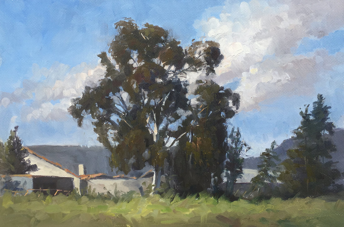 painting, italy. plein air,eucalyptus, tree painting, painting sale, art collect, italian countryside
